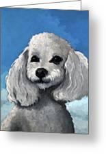 Sherman - Poodle Pet Portrait Greeting Card
