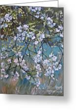 Sherry Flower 1 Greeting Card
