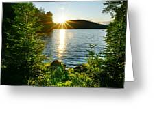 Shimmering Evening Greeting Card