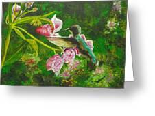 Shimmering Hummingbird  Greeting Card