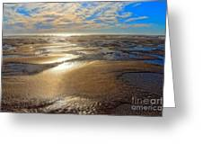 Shimmering Sands Greeting Card