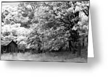 Shiners Cabin Greeting Card