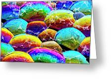 Shiney Bubbles Greeting Card