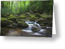 Shining Creek Greeting Card