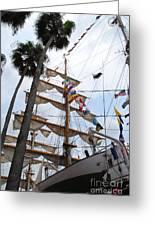 Ships Palm Greeting Card