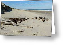 Shipwreck On The Beach Greeting Card