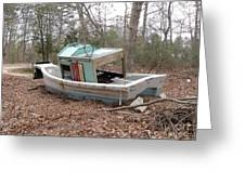 Shipwrecked In The Pinelands Greeting Card
