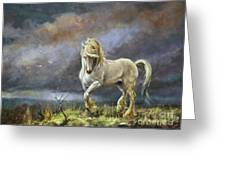 Shire Stallion Greeting Card