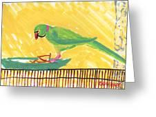 Shirley's Bird Greeting Card