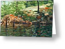 Shoal Lake - Granite Shore Greeting Card