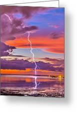 Shocking Pinks Sunset Greeting Card