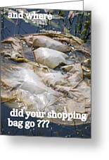 Shopping Bag  Greeting Card