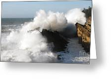 Shore Acres Wave 2 Greeting Card