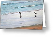 Shore Birds Greeting Card