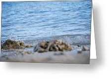 Shore View Greeting Card