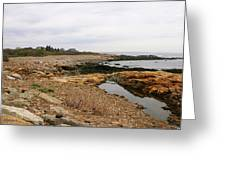 Shoreline Gloucester Massachusetts Greeting Card
