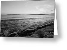 Shoreline Of Jamestown At Dusk Greeting Card