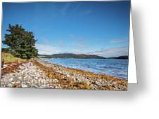 Shoreline On The Kyles Of Bute Greeting Card