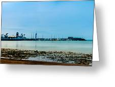 Shoreline View Greeting Card