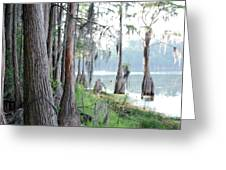 Shores Of Compass Lake Greeting Card