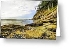 Short Sands Beach, Oregon Greeting Card