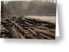 Short Sands Log Slash Greeting Card