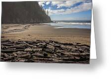 Short Sands Logs Greeting Card