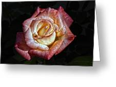 Show Me A Rose Greeting Card