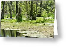 Shreks Swamp Greeting Card