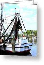 Shrimp Boat Greeting Card by Annette Allman