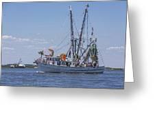 Shrimp Boat Parade Of The Shrimp Festival Greeting Card