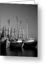 Shrimper Fleet Greeting Card