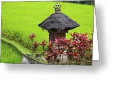 Shrine In Rice Field Greeting Card