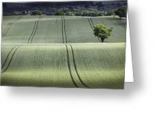 Shropshire Hills Greeting Card