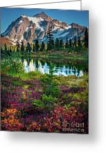 Shuksan Autumn Greeting Card