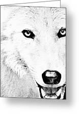 Shy Wolf Greeting Card by Debra     Vatalaro