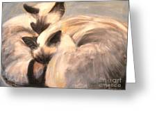 Siamese Lovers Greeting Card