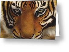 Siberian Tiger I Greeting Card