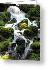 Side Of Clearwater Falls Greeting Card
