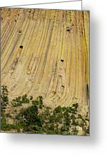 Side Of Devils Tower Greeting Card