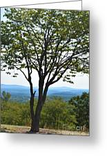 Sideling Hill Lookout  Greeting Card
