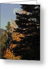 Sierra Autumn Moonset Greeting Card
