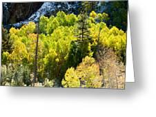 Sierra Fall Forest Greeting Card