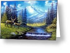 Sierra Mountain Meadow   Greeting Card