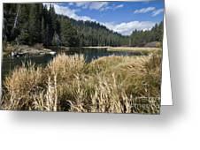 Sierra Serenity Greeting Card