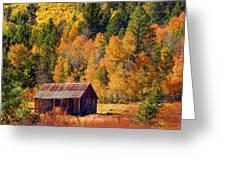 Sierra Solitude Greeting Card