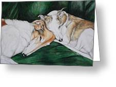 Sighthound Comfort Greeting Card