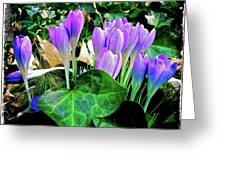 Signs Of Spring I Greeting Card