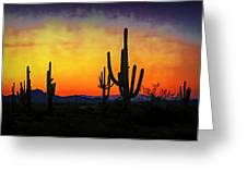 Sihouette Sunrise In The Sonoran Greeting Card