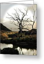 Silent Lucidity Greeting Card